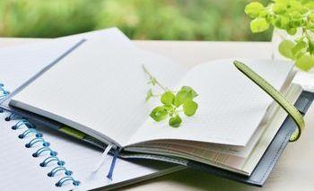 本をたくさん読んでいると、自分にとっての最高の本と出会うことができる