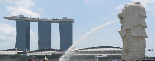 旅行にも興味がない。シンガポールは良かったけど、旅行自体にあまり面白みを感じない