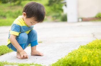 裸足で外で遊ぶことで、五感が刺激されて、神経の性能が良くなる!